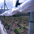 Single-Span+Greenhouse+Transparent%2FBlack+Polyester+Wire