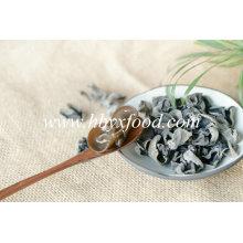 O mais barato fungo preto seco vegetal