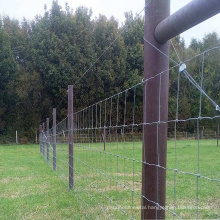 High tensile farm 4ft galvanized steel supply cheap field wire mesh cattle field fence