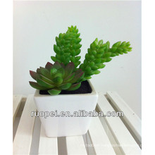 China Wholesale Artificial potted Mini Succulent Plants
