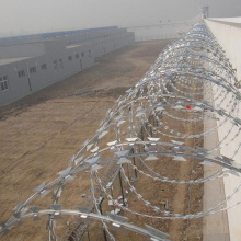 Security fence razor barbed wire