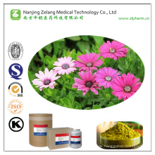 24-Factory Supply Echinacoside mit maximaler Reinheit 20%