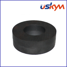China Ferrite Ring Magnets (R-001)