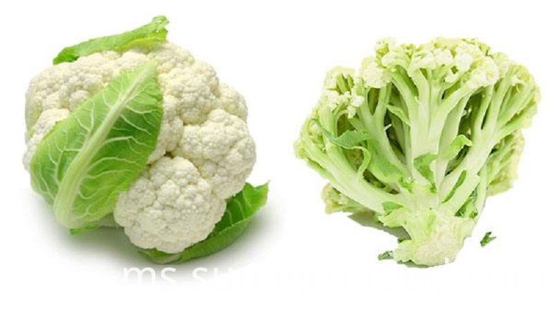 Frozen Vegetable Cauliflower