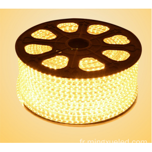 5050 LED s'allume AC110V LED bande lumineuse LED Strip