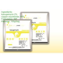 Fongicide large spectre Kasugamycine haute efficacité 47% Wp