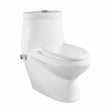 The Middle East Popular Design Combination Toilet Bidet