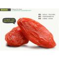 Heißer Verkauf Health Food Goji Berry von Ningxia, China Snack