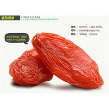 Vente chaude de la nourriture de santé Goji Berry de Ningxia, en Chine Snack