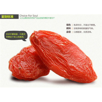 Hot Sale Health Food Goji Berry From Ningxia, China Snack