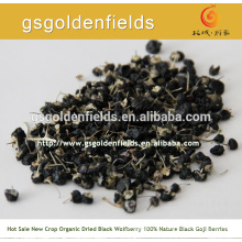 black goji berry on hot sale