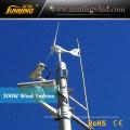 300W 24V Alternator Mini Wind Turbine