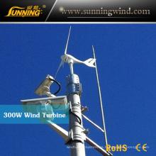 Turbina de viento del alternador de 300W 24V mini