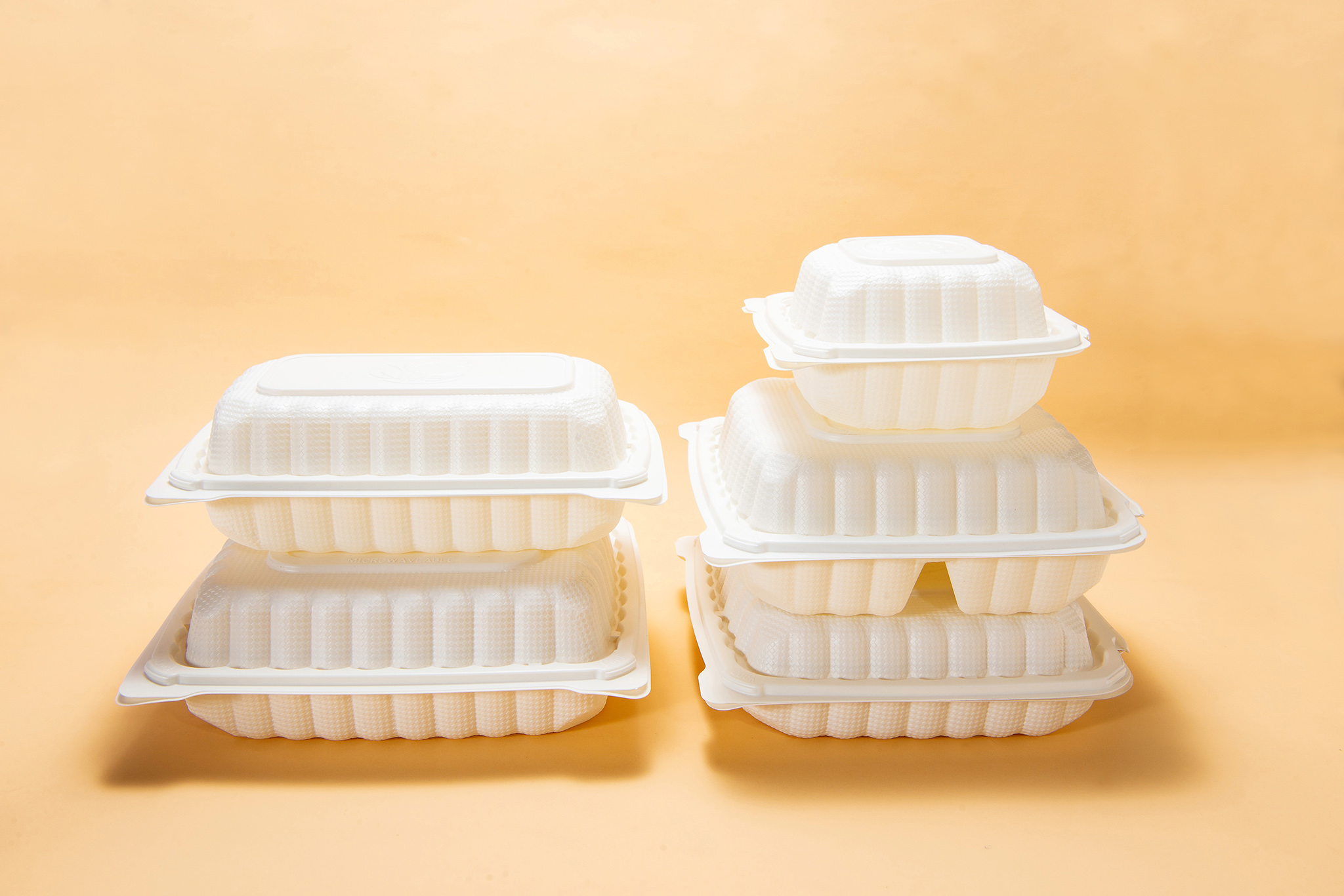 disposable lunch box portable