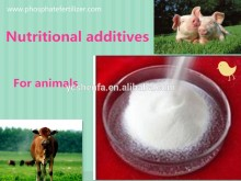 livestock feed additive Dicalcium Phosphate