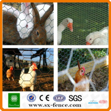 chicken and rabbit wire mesh fence