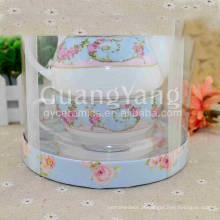 Flores bonitas diferentes que imprimem o potenciômetro cerâmico do chá com filtro do chá