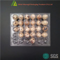 Clear transparent 30 holes plastic quail egg tray