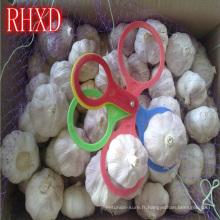 bénéfice de santé de l'ail chinois