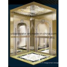 Ascenseur de passagers avec puits de miroir gravé (JQ-B019)