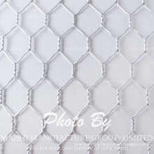 Electro Galvanized Hex-Shape Wire Mesh