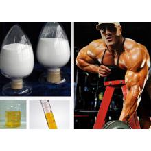 Nandrolona Undecilato / nandrolona undecanoato / Dynabolon CAS 862-89-5 para construcción muscular