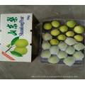 Популярные продажи супер груша фрукты с сертификатом