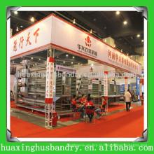 China popular e acessórios de frango de boa qualidade