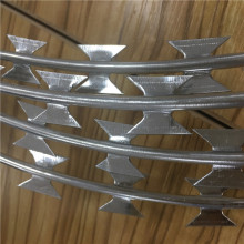 High Security Razor Wire Concertina Coil Fence