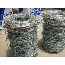 Electro Galvanized Steel Iron Barbed Wire