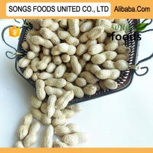 Alibaba Best Peanuts , Cheap Price