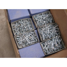 Roofing Nail (NAIL001)