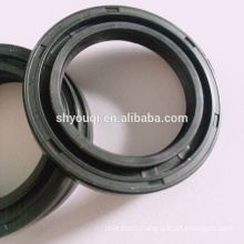 AutoNBR/Silicone /Viton DC national rubber skeleton hydraulic jack oil seal