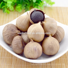 Odorless Solo Single Bulb Black Garlic Manufacturer