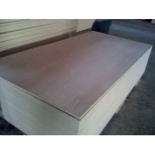 China BB/CC WBP/MR commercial plywood trading company