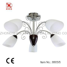 Hot selling  chandelier & ceiling lighting
