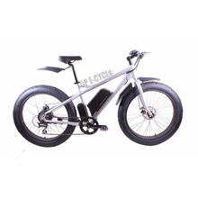 CE pass reasonable price eight fun motor fat bike electric 500W