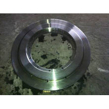Floating Flanges, Heavy Forging Flanges (FF2045)
