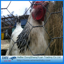 Galvanized Hexagonal Wire Mesh/Chicken wire mesh