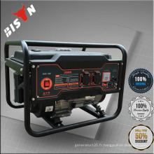 BISON CHINA Bonne qualité 2kw Dynamo Generator Price