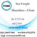 Shenzhen Port Sea Freight Shipping Para Ulsan