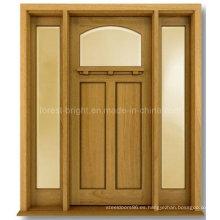 Craftsman Style Exterior Puerta de madera maciza con dos lados laterales