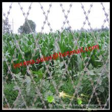 Hot galvanized security weld razor blade wir e mesh fence