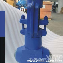 API 602 Forged Steel High Pressure Globe Valve (J61)