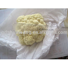 2011chinese fresh white cauliflower