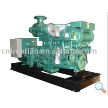Marine Generator With Brushless Alternator