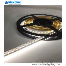 DC12V / 24V SMD 3014 CCT lampe de LED à LED réglable