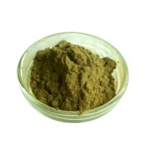 Extrait naturel de champignon Hericium