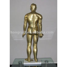 Human Acupuncture Simulator 85CM (bronze)