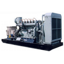 Natural Gas Power Generator Set 50Hz/1500rpm